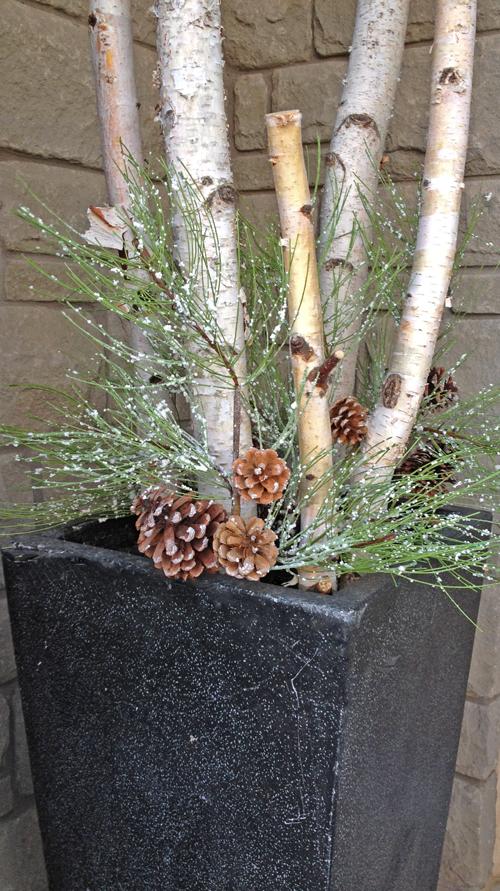 Designing Winter Planters | Trix & Trumpet